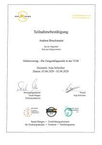 TCM: Zungendiagnostik