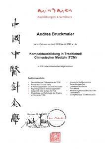 Kompaktausbildung Traditionell Chinesische Medizin Human