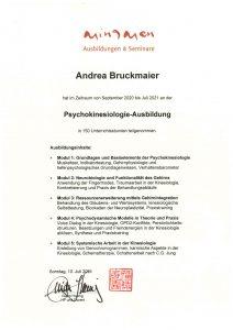 Psycho-Kinesiologie