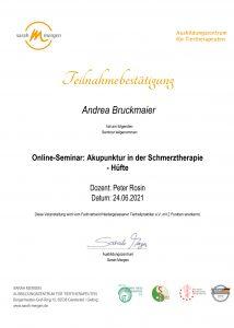TCM: Akupunktur in der Schmerztherapie Hüfte