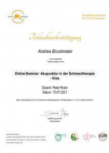 TCM: Akupunktur in der Schmerztherapie Knie